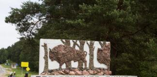 Беловежская пуща, въезд в Беловежскую пущу, беларуская сторона пущи