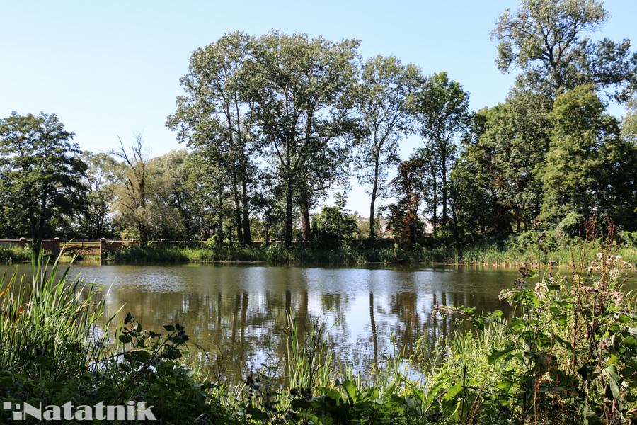 парк, Дворцово-парковый комплекс Сапегов-Потоцких
