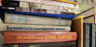 кніжныя паліцы, книжные полки, книги