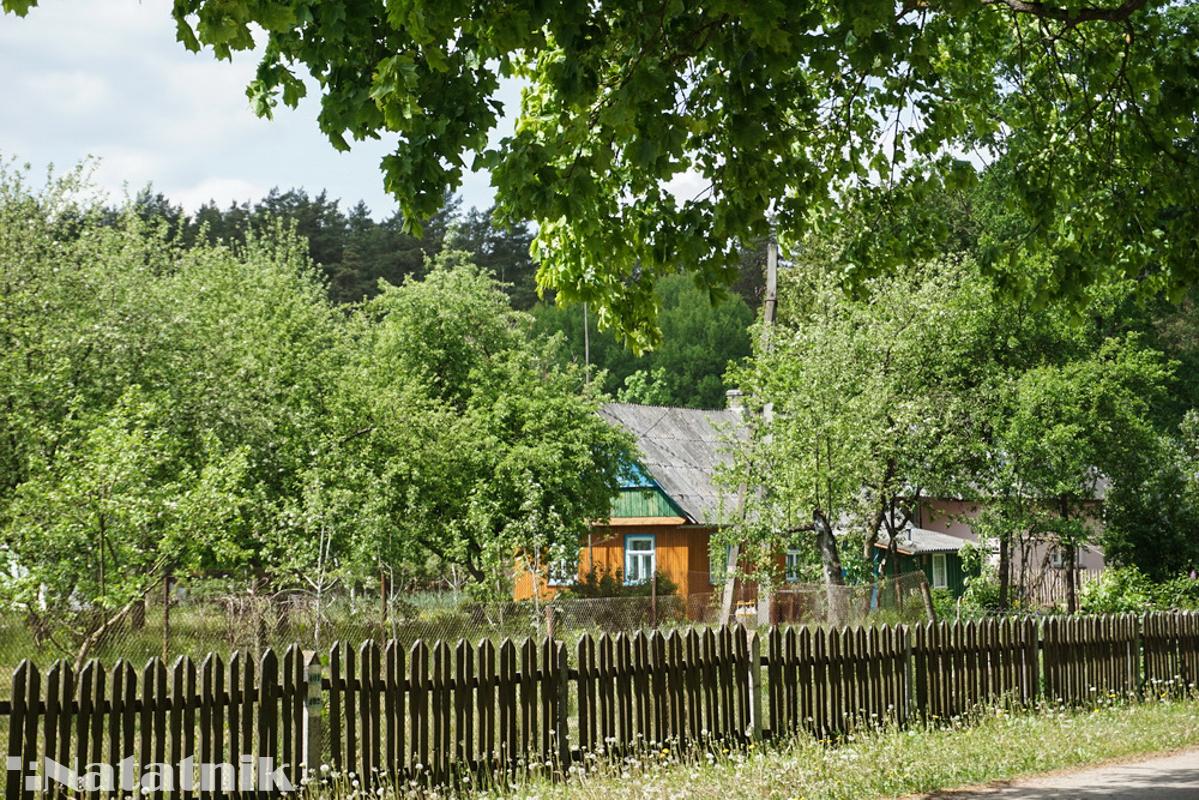 Домик в деревне, деревенский дом