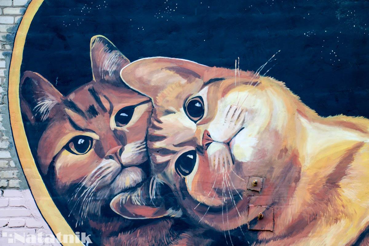 стрит-арт в Бресте, рисунок, стена, котельное хозяйство, коты, Лёня Василькович