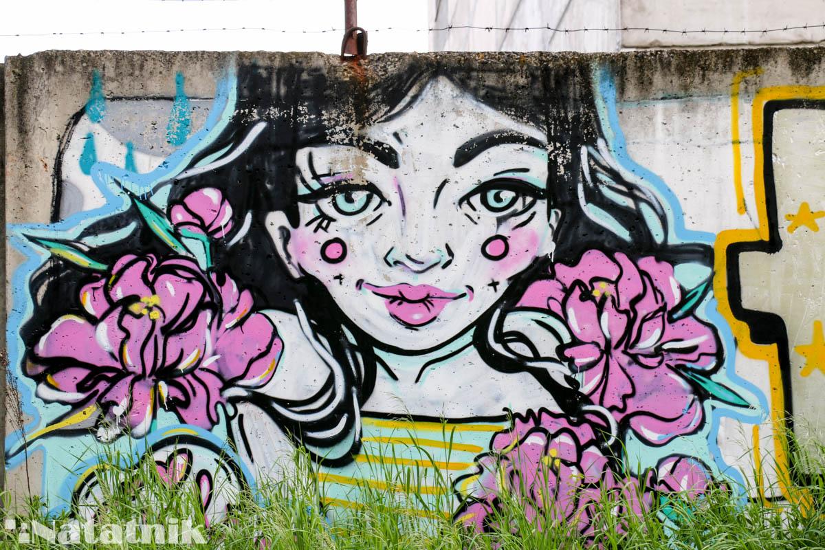 стрит-арт в Бресте, рисунок, стена, забор, девушка, цветы