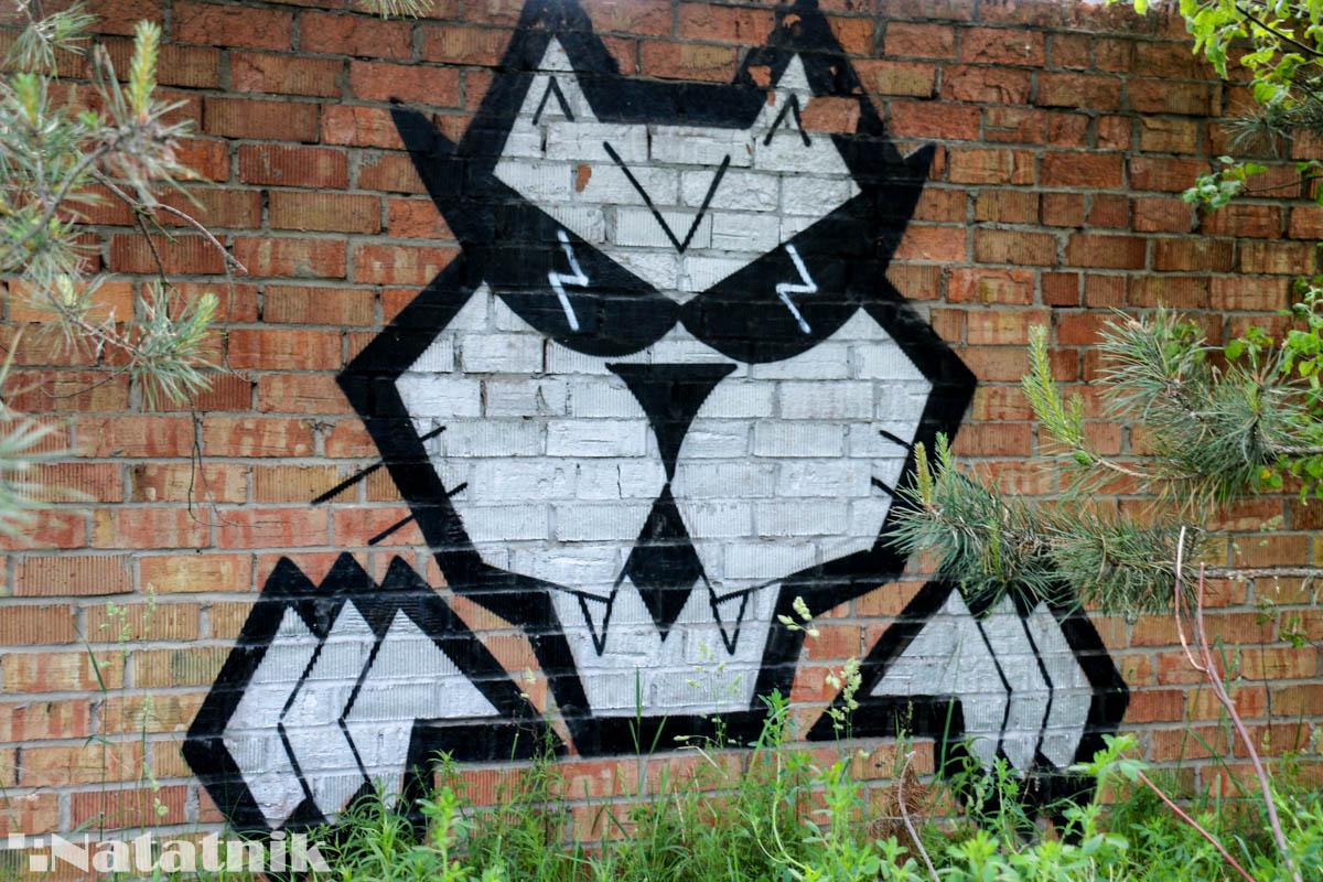 стрит-арт в Бресте, рисунок, стена, кот