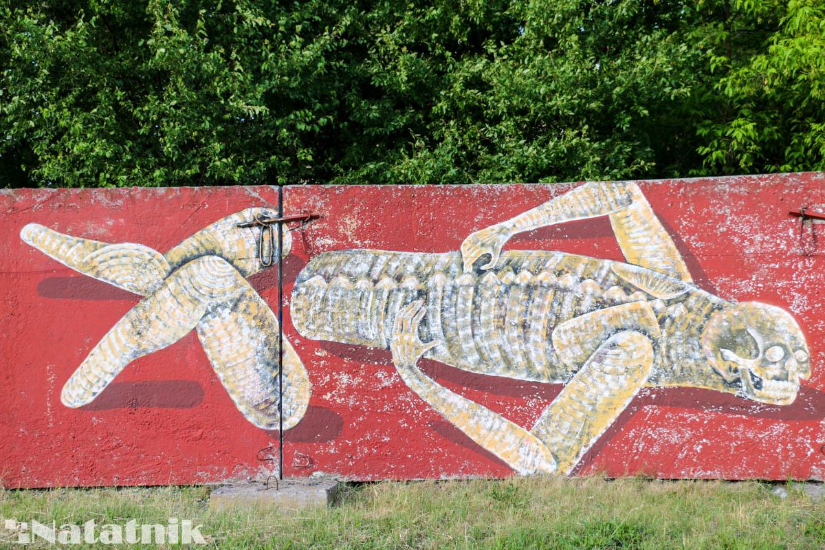 стрит-арт в Бресте, рисунок, стена, скелет, боль, забор