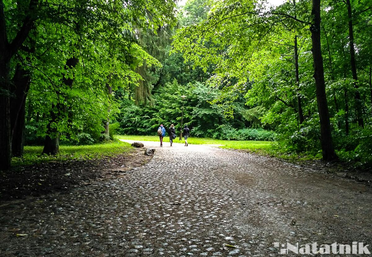 Беловежская пуща, Белавежская пушча, Польша, Белавежа, парк в Белавеже
