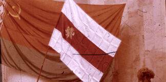 Сессия независимости, 25 августа 1991 года, Незалежнасць, Беларусь, сцяг