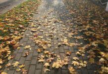 осень, афиша, Брест, 20-22 октября