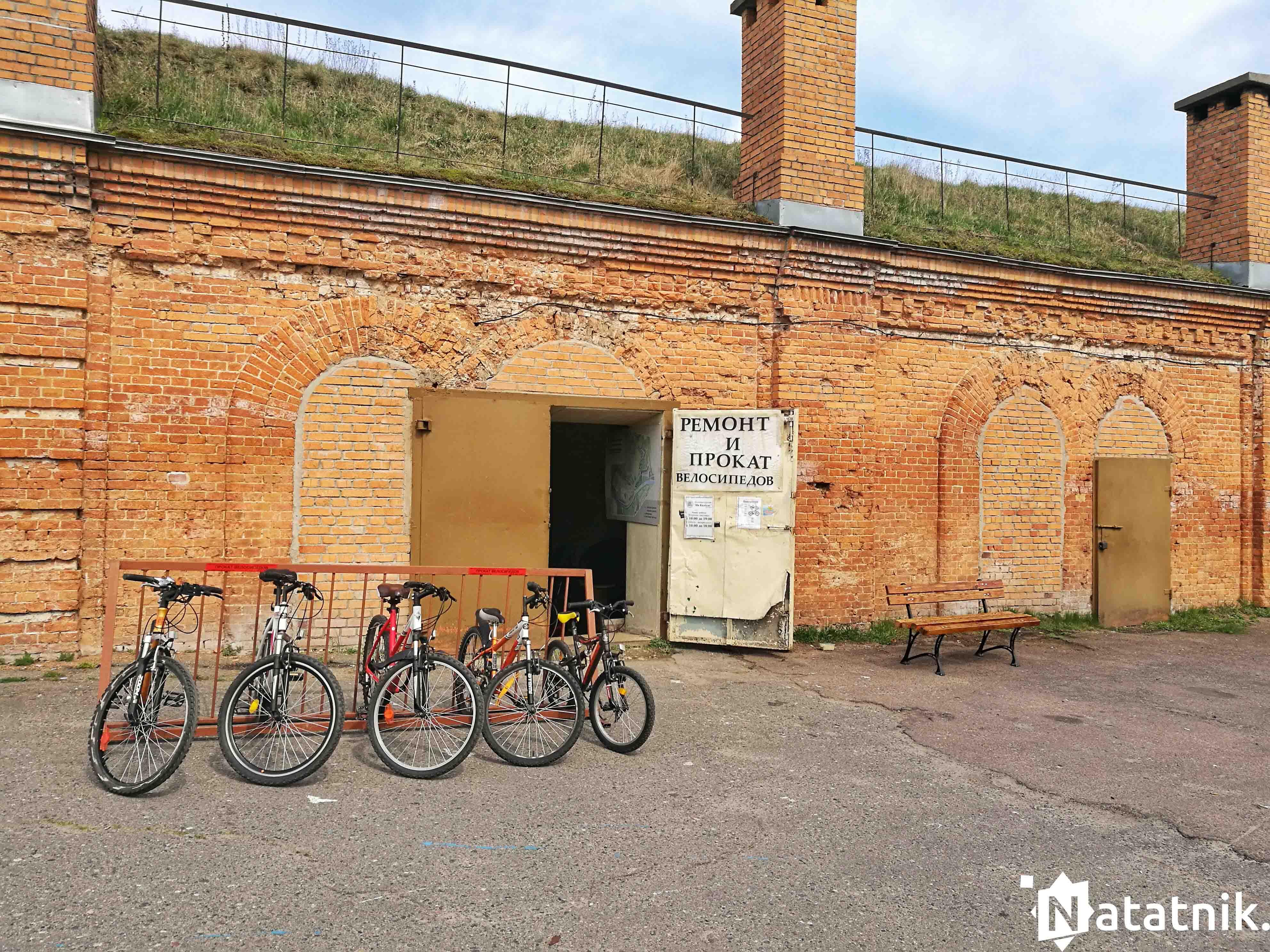 велосипед, прокат, Брест