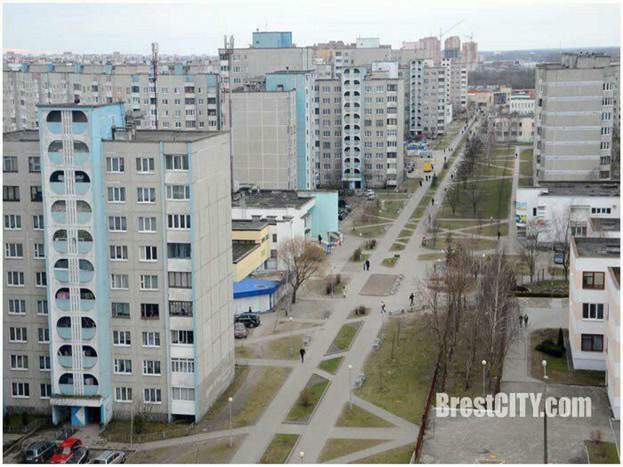 аллея имени Дмитрия Гвишиани Брест