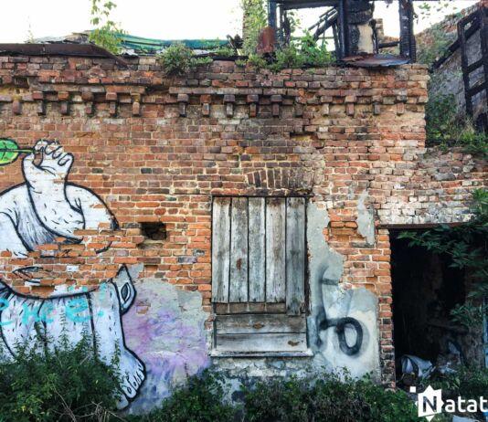 Заброшенный дом на Советской