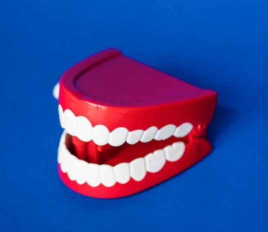 стипендия зубы