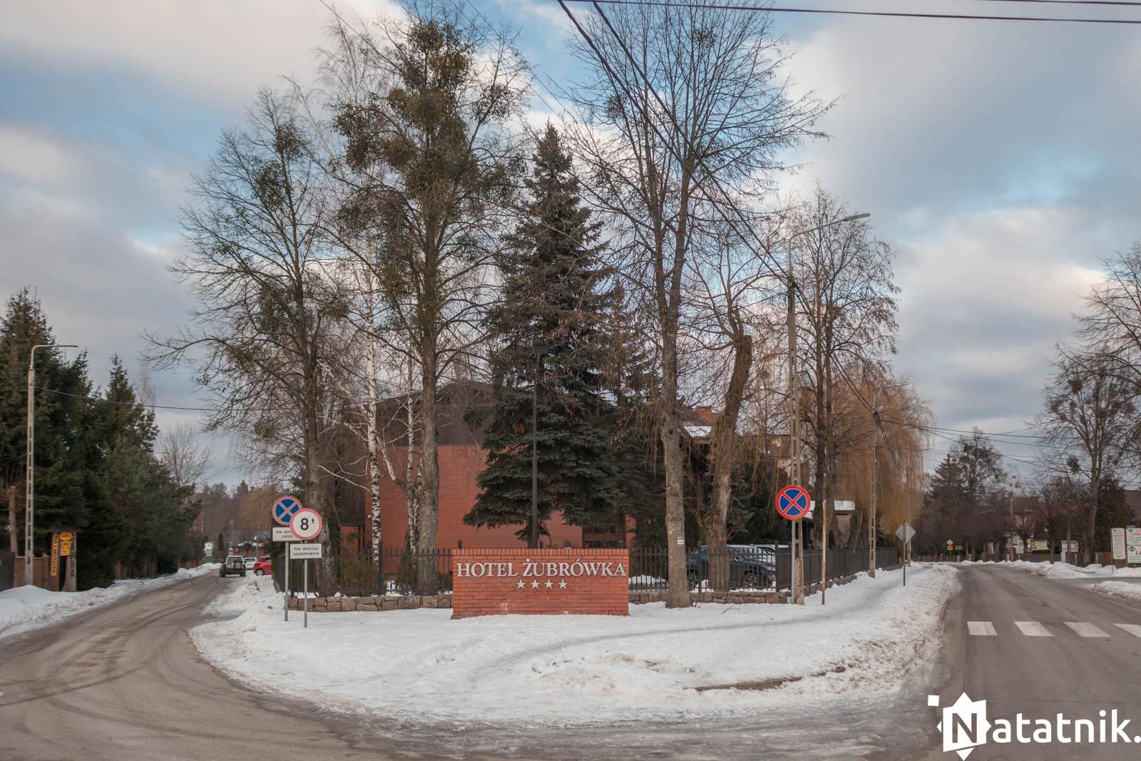 Беловежа, беловежская пуща, отель Зубровка, bialowieza